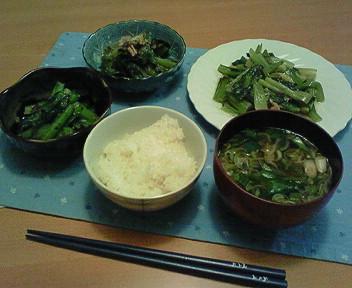 3月3日の小松菜まつり
